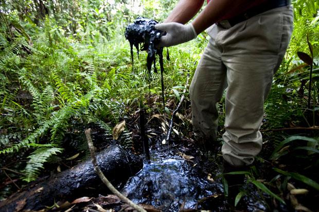 Śmierć w Amazonii, Domosławski A, Okres ochronny na czarownice, Ekwador,  Carmaniola